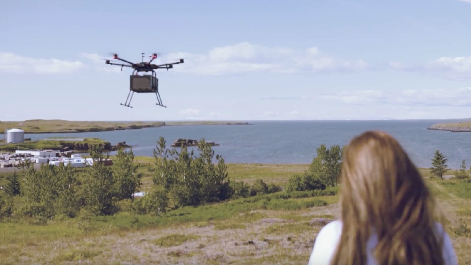 drone delivery iceland